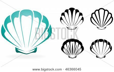 Shell collection - vector silhouette illustration