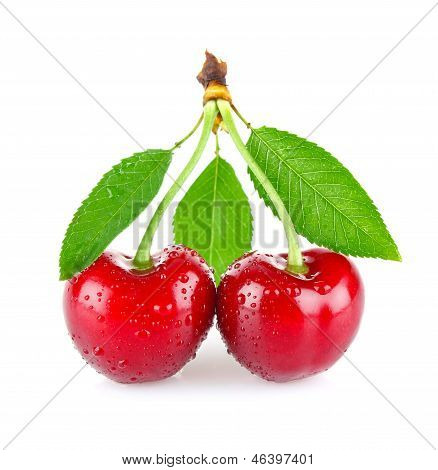 Ripe Juicy Cherry With Drop Dew And Green Leaves