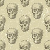 pic of skull bones  - Retro - JPG