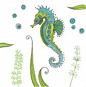 picture of seahorse  - Tropical Seahorse background  - JPG