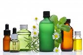 stock photo of bottles  - Essential oil  glass bottles with rosemary - JPG