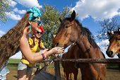 picture of feeding horse  - Beautiful girl feeding her horses at ranch - JPG