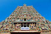 pic of meenakshi  - Menakshi Temple - JPG