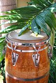 stock photo of congas  - Caribbean style conga drum among the palm trees - JPG