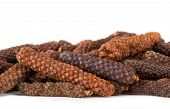 stock photo of naturel  - Long pepper or Piper longum on white background - JPG