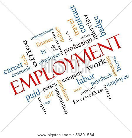 Employment Word Cloud Concept Angled