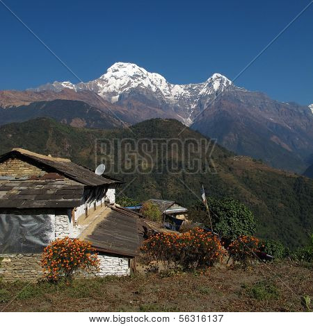 Idyllic landscape in the Annapurna Conservation Area, Ghandruk