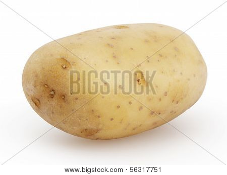 New Potato Isolated On White Background With Clipping Path