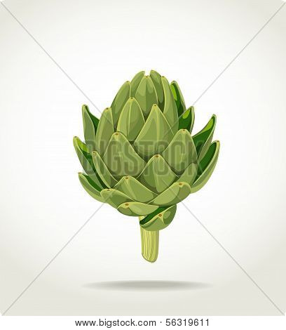 green fresh useful eco-friendly artichoke