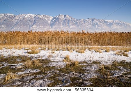 Snow Covered Mountains Behind Lakeside Highway Plant Growth Utah Landscape