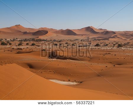 Red Dunes Of Namid Desert
