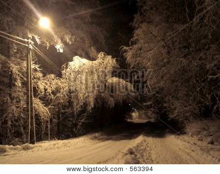 Road In The Snow-land