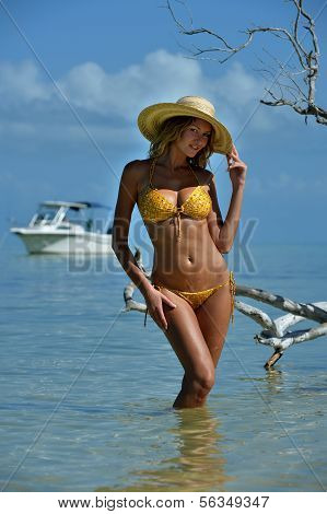 Model in straw hat posing sexy at tropical beach location