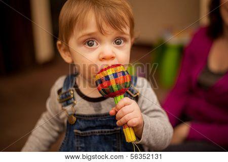 Chico lindo bebé masticar sus juguetes