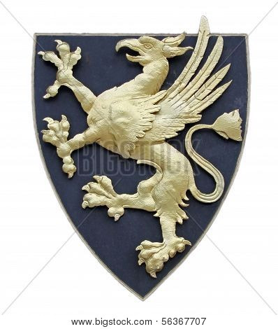 Griffin as a symbol for a coat of arms, isolated on white