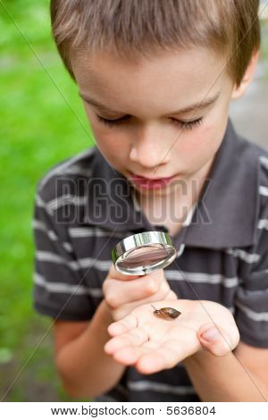 Kid With Snails