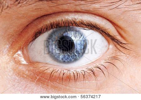 Man Eyes