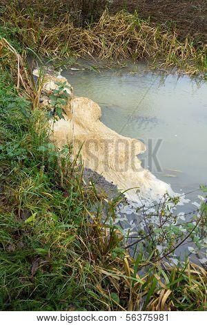 River Scum