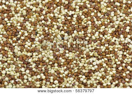 White And Red Quinoa
