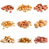 Nine variety of nuts on a white background