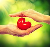 stock photo of holiday symbols  - Valentine Heart in Man and Woman Hands over Nature Green Sunny Background - JPG