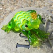 pic of glass frog  - A cute glass prince frog that is so cute!