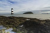 picture of anglesey  - Pebbled beach looking to small lighthouse and island - JPG