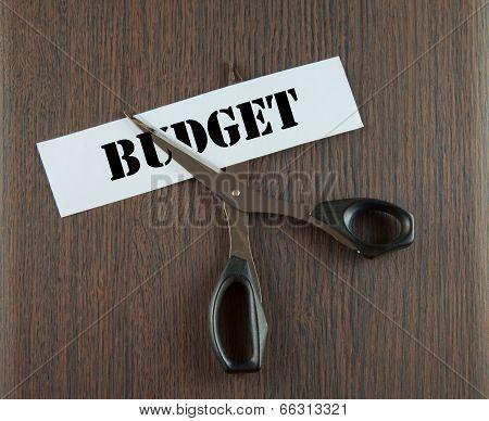 Cutting Budget