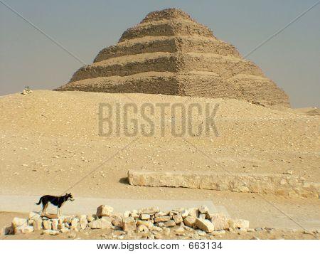 Pyramid Of Zozer At Saqqara (Sakkara)