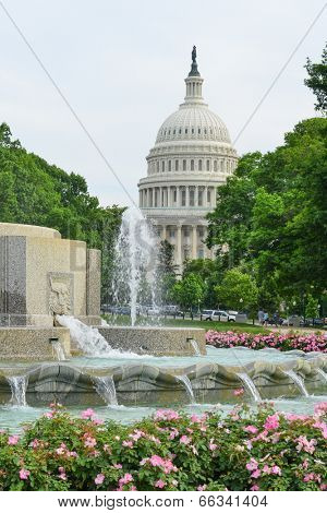 The Capitol and Senate Fountain - Washington D.C. United States of America