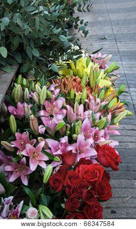 Flowers at las ramblas