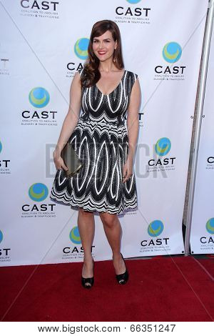 LOS ANGELES - MAY 29:  Sara Rue at the 16th Annual From Slavery to Freedom Gala Event at Skirball Center on May 29, 2014 in Los Angeles, CA