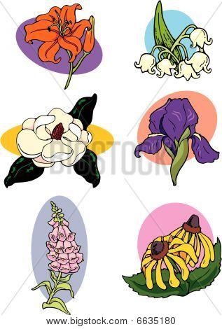 flower spots