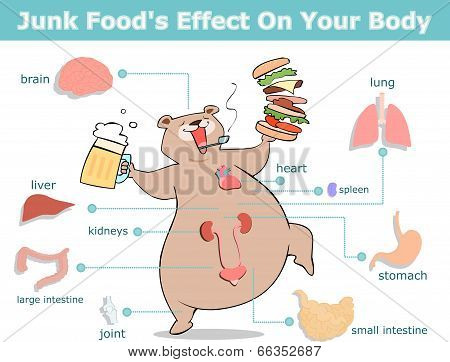 junk food's effect