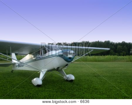 Taylorcraft On Grass