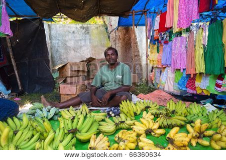 HIKKADUWA, SRI LANKA - FEBRUARY 23, 2014: Local street vendor selling bananas. The Sunday market is a fantastic way to see Hikkaduwa's local life come alive along with fresh produce and local delicacy