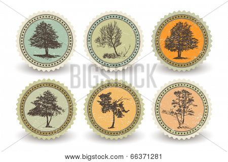 Set of bio labels with trees, color version. Image, scratches and shadows on separate layers
