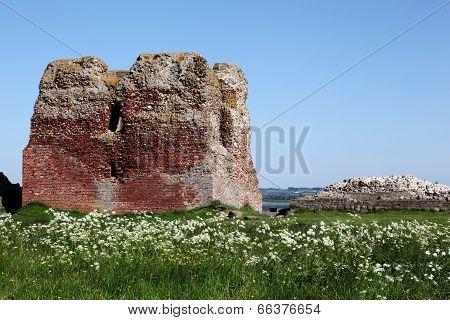 Kalø castle ruin