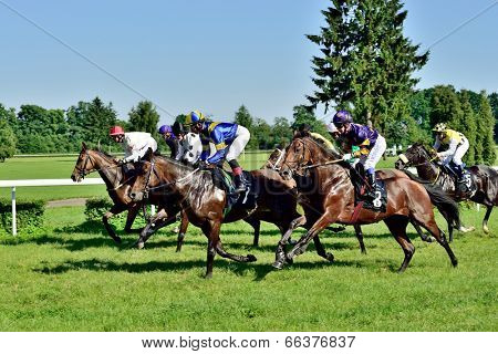 WROCLAW, POLAND - JUNI 8: Horse race for the prize of the President of the City of Wroclaw on Juni 8, 2014. Race wins horse Silvaner with the number 7, son of the legendary horse Lomitas.