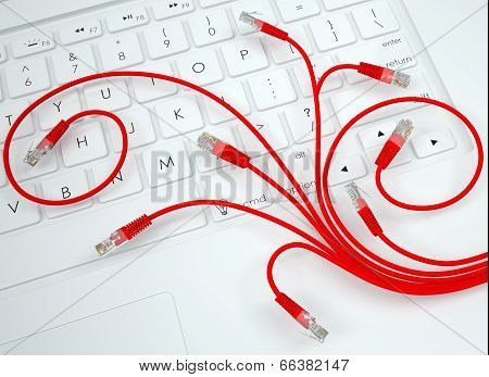 Flower of internet cable on the keyboard