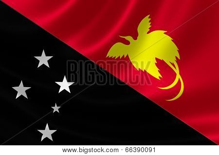 Close Up Of Papua New Guinea's Flag