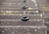 image of asbestos  - Screw protection stud on grey asbestos roof