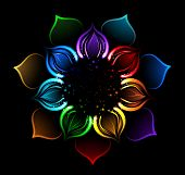 picture of karma  - with iridescent petals of a lotus painted bright sparks on a black background - JPG