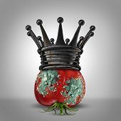foto of corrupt  - Corruption leadership concept as a roten tomato with mold wearing a rusted king crown as a business metaphor for a corrupt leader or oppressor slowly rotting away - JPG