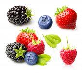image of blackberries  - Summer berry fruits - JPG