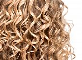 picture of perm  - Curly blonde hair closeup - JPG