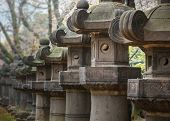 stock photo of shogun  - Stone Lanterns of Toshogu Shrine at Ueno Park in Tokyo - JPG