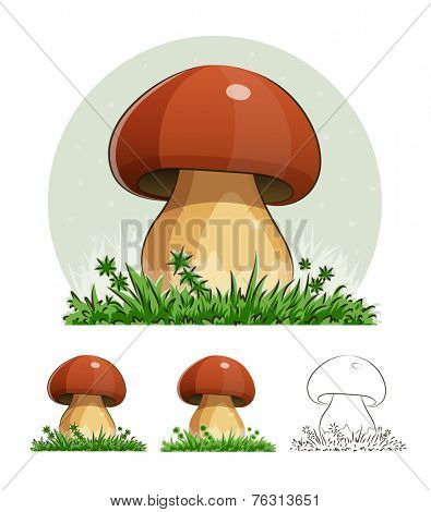 Cep. Mushroom. Eps10 vector illustration. Isolated on white background
