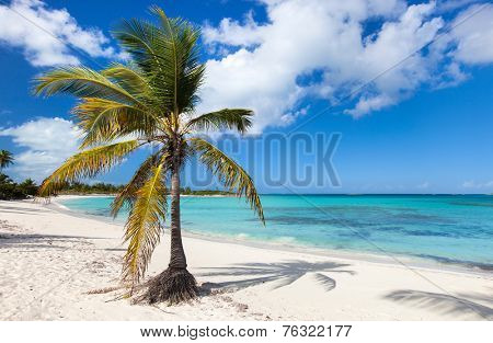 Beautiful tropical beach at Exuma Bahamas