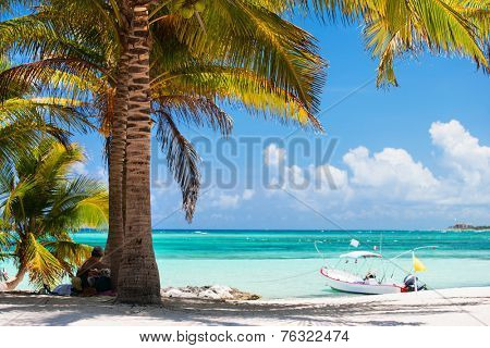 Beautiful Akumal beach in Mexico with white sand, turquoise water and palms